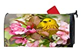 Customize Mailbox Makeover Cover - Magnetic Mailbox Cover Mail Wrap Vinyl for Standard Mailboxes Size (Super Colorful Spring Bird)