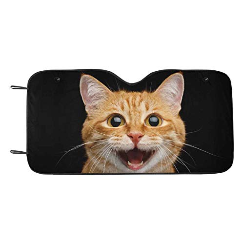 INTERESTPRINT Funny Portrait of Happy Smiling Ginger Cat Windshield Sun Shades UV and Sun Protection for Your Vehicle