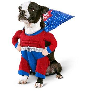 petco halloween superhero boy dog costume large