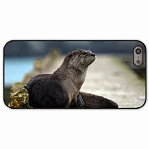 iPhone 5 5S Black Hardshell Case otter animal muzzle hair Desin Images Protector Back Cover