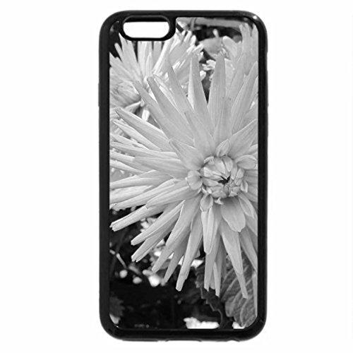 iPhone 6S Plus Case, iPhone 6 Plus Case (Black & White) - A fabulous day at Edmonton garden 40