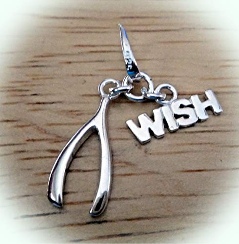 Sterling Silver 18x12mm Movable says Wish with Wishbone Charm Vintage Crafting Pendant Jewelry Making Supplies - DIY for Necklace Bracelet Accessories by CharmingSS]()
