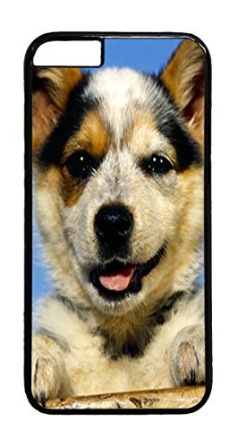 Austrailian Cattle Puppy Animal PC Case Cover for iphone 6 4.7inch - Black