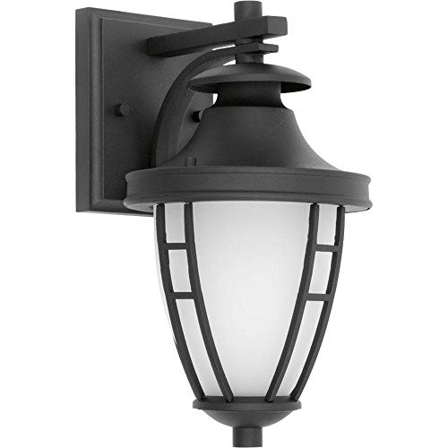 Progress Lighting Fairview Collection 1-Light 11.75 in. Outdoor Textured Black LED Wall Lantern