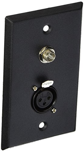 Seismic Audio SA-PLATE11 Black Stainless Steel Wall Plate with One 1/4-Inch TS Mono Jack and XLR Female Connector ()