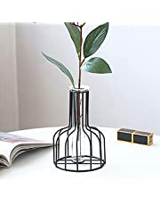 TWSOUL Flower Vases with Iron Art Frame, Gold Flower Vase, Test Tube Vase for Hydroponic Plant, Small Bud Vase for Home Kitchen Office Table Top Decor