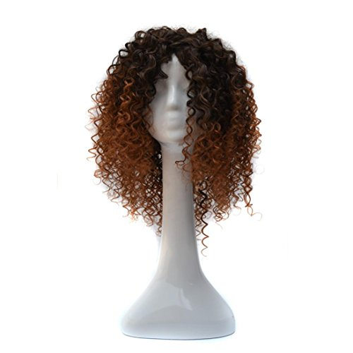 Long Kinky Curly Hair Wigs For Black Women Fluffy Wavy Synthetic Wig Natural Looking Heat Resistant Wigs Half Hand Tied Willsa