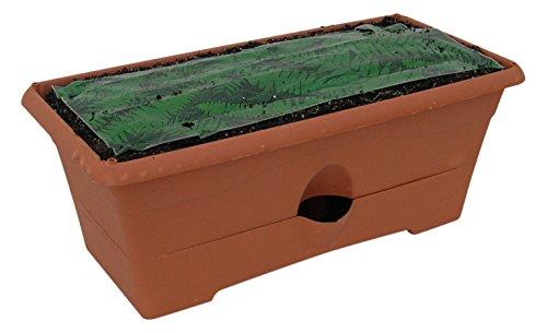 Garden Patch Box (Garden Patch Terra Cotta The Grow Box)