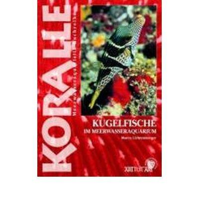 Download Art f?r Art 16. Kugelfische: Im Meerwasseraquarium (Paperback)(German) - Common PDF