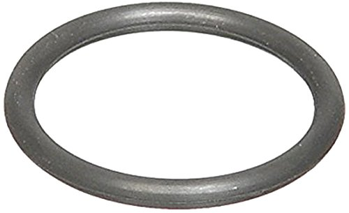 Ishino Distributor O-Ring