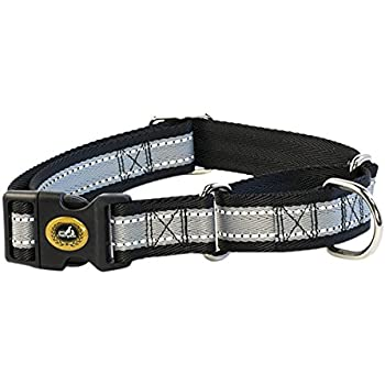 Pet Champion Martingale Dog Collar