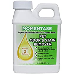 Momentase Natural Enzyme Cleaner Concentrate High Strength Pet Odor & Stain Remover Non-Toxic Makes 2 Gallons of Solution for Dog & Cat Urine, Feces, Vomit, Organic Soils