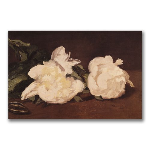 Branch of White Peonies by Edouard Manet, 16x24-Inch Canvas Wall Art ()