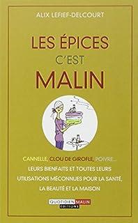 Les épices c'est malin : cannelle, clou de girofle, poivre... leurs bienfaits et toutes leurs utilisations méconnues pour la santé, la beauté et la maison, Lefief-Delcourt, Alix