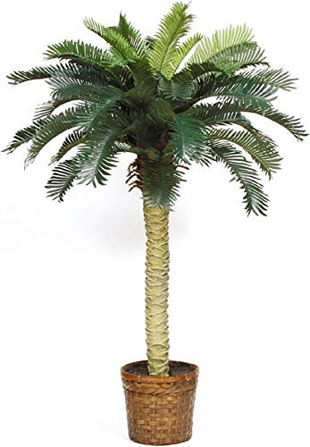 - MISC 4 Foot Silk Sago Palm Tree with Wicker Basket Fake Inhouse Plant Faux Cycas Revoluta 4ft Artificial Tree Cycadaceae Indoor Palmtree Feaux Plants Green Brown, Polyester Silk Blend