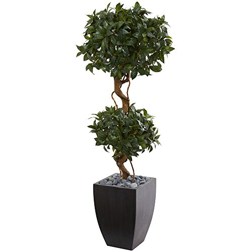 Nearly Natural Artificial Wash 4.5' Sweet Bay Double Topiary Tree, Black Planter, - Bay Sweet Topiary