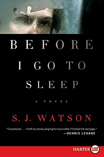 Before I Go To Sleep ebook