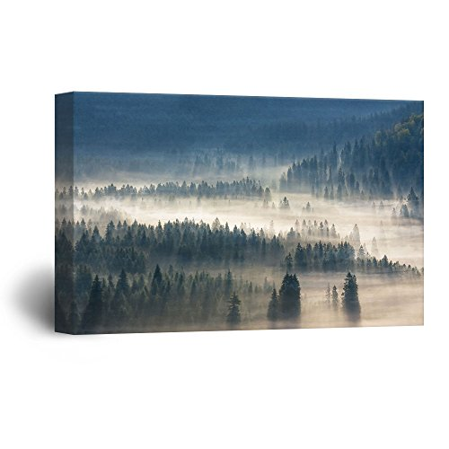 Pine Forest with Fog Gallery