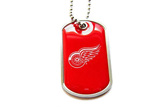 aminco Detroit Red Wings Dog Tag Domed Necklace Charm Chain