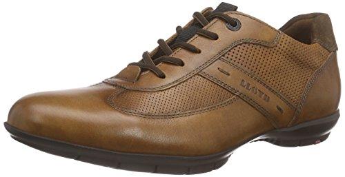 Kenia LLOYD 4 Cigar Herren Sneaker Antonio Braun qqZwnAvg6