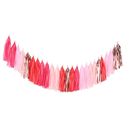 Fonder Mols 25pcs Pink and Rose Gold Tassel Garland DIY Kit for Valentines Day, Birthday Party, Bachelorette, Galentines Day, Gender Reveal, Girl Baby Shower Decorations A16