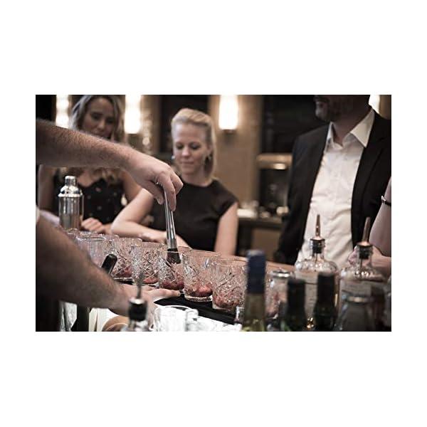 Buddy's Bar - Boston Bar Set, 700 ml, Boston Cocktail Shaker, misurino da Bar, pestello, Strainer, Set da Bar con… 5 spesavip