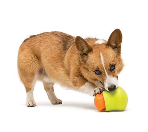 West Paw Zogoflex Toppl Interactive Treat Dispensing Dog Puzzle Play Toy, 100% Guaranteed Tough, It Floats!, Made in USA, Small, Granny Smith by West Paw (Image #4)