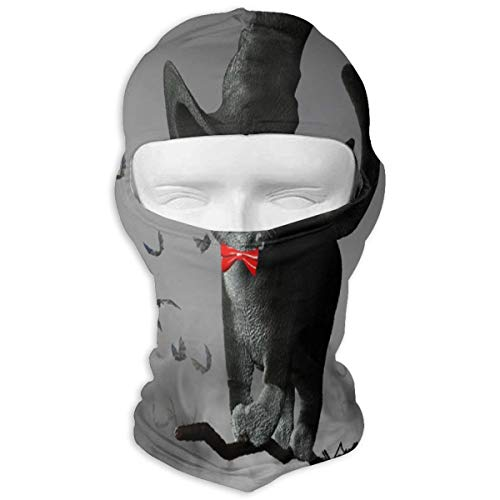 3D Illustration Of Cat Wearing A Witches Hat On Halloween Flying On A Broom Full Face Masks UV Balaclava Hood Ski Mask Motorcycle Neck Warmer Tactical Hood For Cycling Outdoor Sports Hiking