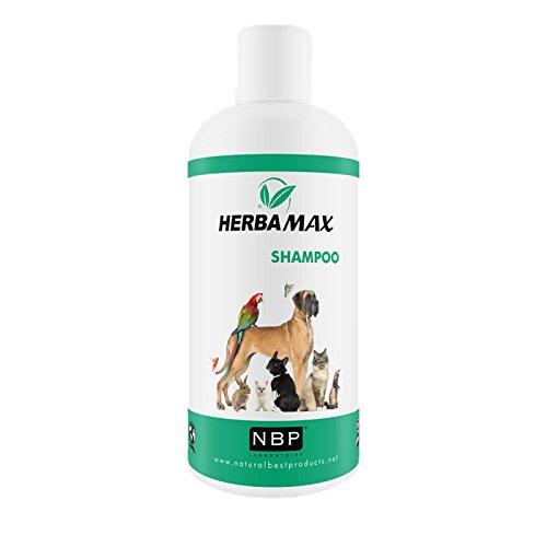 Herba Max Naturprodukt Öko Ungeziefershampoo Flohshampoo 200ml für Hunde und Katzen