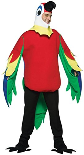 Bristol Novelty AC520 Parrot Costume, One Size -