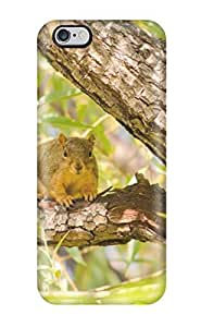 Irene C. Lee's Shop 2663944K18628065 Hot Tpu Cover Case For Iphone/ 6 Plus Case Cover Skin - Squirrel