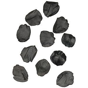 Darice RC-7209-88 Decorative Satin Rose Petals, Black, 100-Pack 62