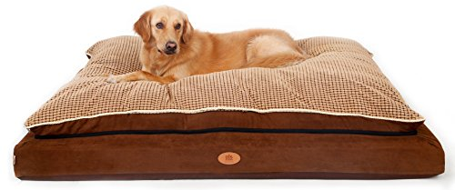 PLS Pet Paradise Orthopedic Pet Bed, Orthopedic Dog Bed, (Giant, 39Wx54L), Foam Dog Bed, Dog Beds for Large Dogs, Firm Medical Grade Foam, Plush Top, Easy-Clean