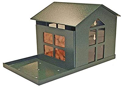 Erva Durable Bird Proof Squirrel Feeder