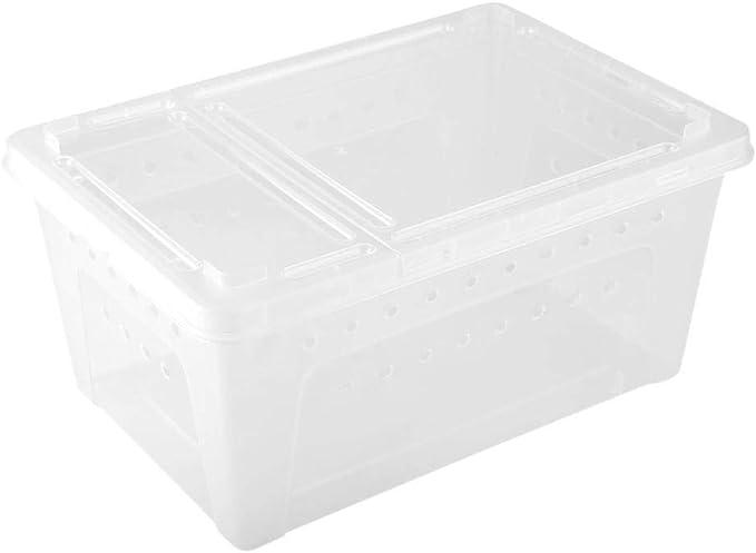 Broco La alimentación Duradera de plástico ventilada Envase for el Lagarto escorpión araña (Transparente): Amazon.es: Productos para mascotas