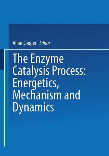 The Enzyme Catalysis Process: Energetics, Mechanism and Dynamics