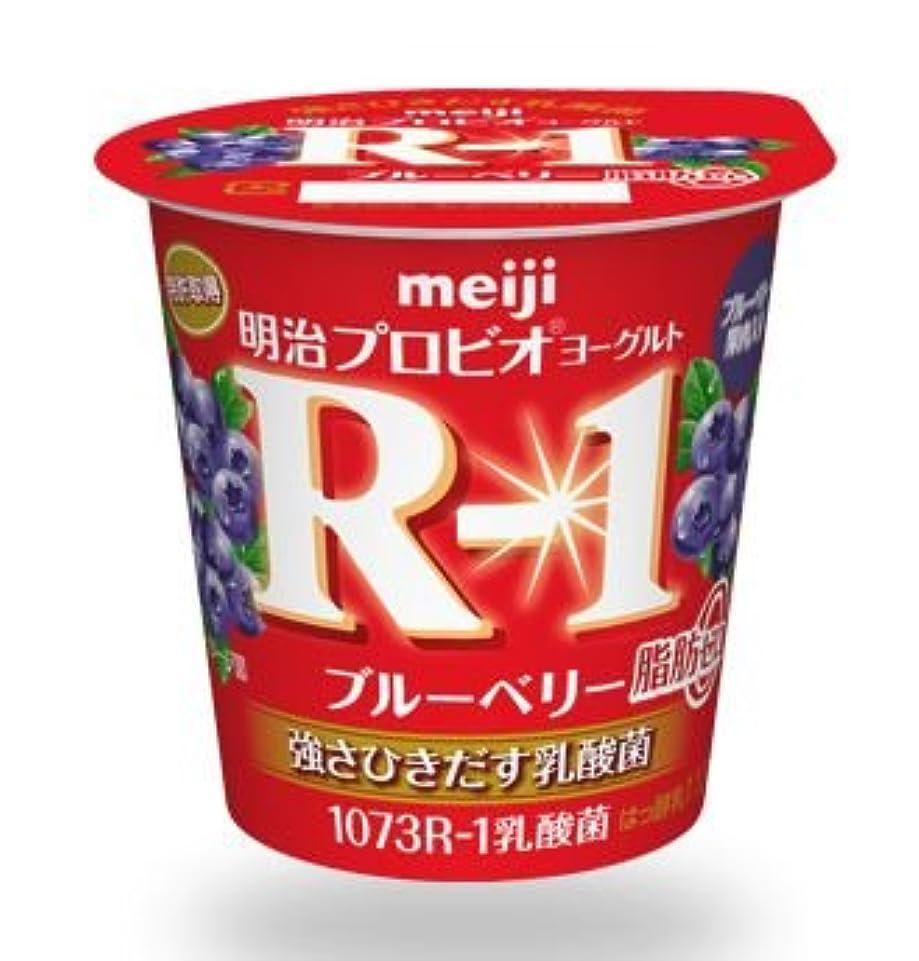 ワーム容量成功した北海道乳業 フルーツサラダヨーグルト 130g×6個