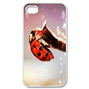 Nuktoe Ladybug IPhone 4/4s Case Ladybug in the Rain for Girls, Iphone 4 Case Cute for Girls [White] by icecream design