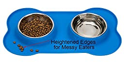 Stainless Steel Dog Bowl No Spill Food and Water Double Bowls for Pet Puppy Cat with Silicone Mat