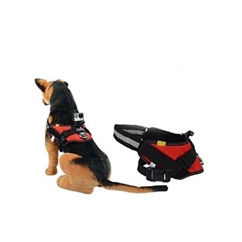 Arnés Mascotas Para Cámara Deportiva Tamtam Gopro Hero Ttarmaxlcd: Amazon.es: Productos para mascotas