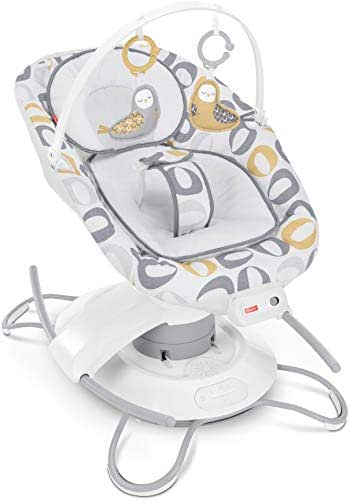 Fisher-Price 2-in-1 Deluxe Soothe 'n Play Glider [Amazon Exclusive]