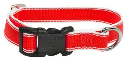 Waggo Stripe Hype Collar - Cherry - Large - 19-26 inch x 1 inch