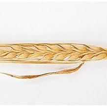 David's Garden Seeds Grain Crop Barley Colon GF6766 Organic One Pound Package