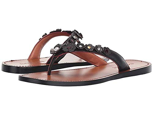 Coach Women's Tea Rose Multi Thong Sandal - Leather Black 7 B US (Coach Flats Shoes)
