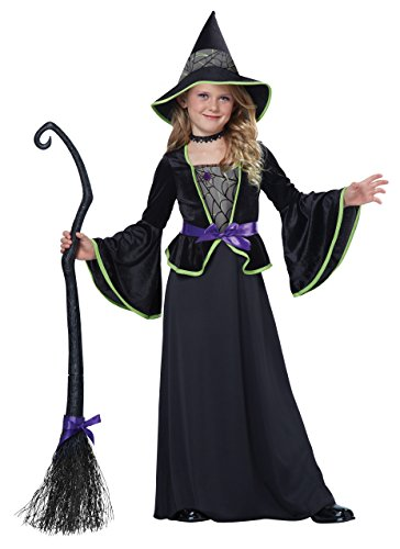 California Costumes Classic Witch/Child Costume, One Color, -