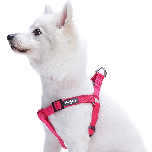 "Blueberry Pet 19 Colors Step-in Classic Dog Harness, Chest Girth 16.5"" - 21.5"", French Pink, Small, Adjustable Harnesses for Dogs"