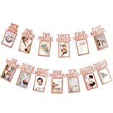 Toys : Whaline 1st Birthday Baby Photo Banner for Newborn to 12 Months, Monthly Milestone Photograph Bunting Garland, First Birthday Celebration Decoration (Rose Gold)