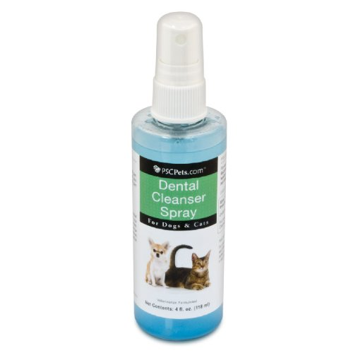 Dental Cleanser Spray