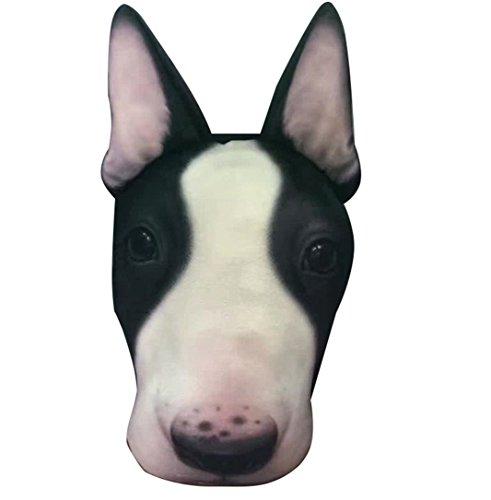 Toy Bull Terrier - 4
