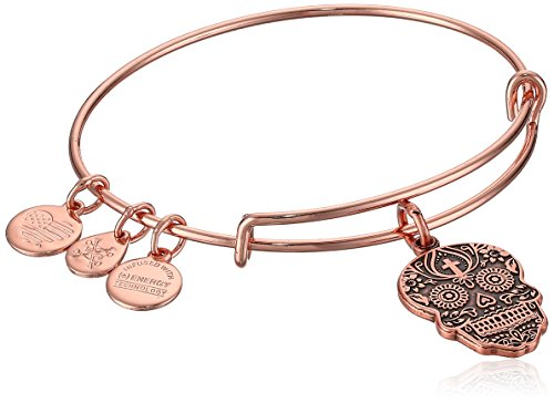 - Alex and Ani Women's Calavera Rose Gold Charm Bangle Bracelet, Expandable